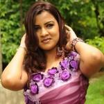 Dimple Telugu Actress Photos