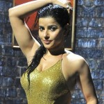 Madhu Sharma Hot Wet Pics