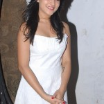 Actress Ritu Barmecha Latest Hot Photo Gallery