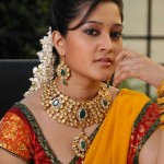 Ritu Barmecha Saree Photo Gallery