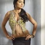 Shriya Saran Latest Hot Photo Shoot Stills