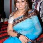 Sona Hot in Saree Pics