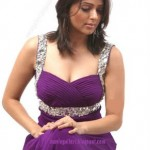 Bhumika Chawla Photo Shoot Pics
