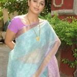 Bhumika Chawla Saree Stills