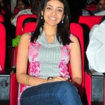 Kajal Agarwal @ Brindavanam Movie Platinum Disc Function Stills