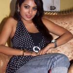 Meenakshi New Hot Pictures
