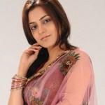 Nisha Agarwal Hot Photo Shoot Pics