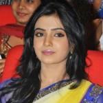 Samantha in Saree Hot Images