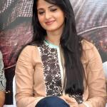 Anushka @ Ragada Movie Pressmeet Stills