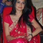 Kriti Kharbanda Saree Pics