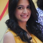 Kriti Kharbanda Hot Pics