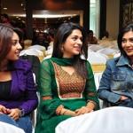 Nagavalli Success Meet Stills
