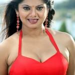 Swati Verma Hot Pics