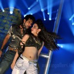 Thillalangadi Movie Stills