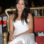 Ritu Barmecha Hot Pics @ Aha Naa Pellanta Pressmeet