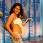 Anushka Hot Ragada Images