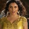 Chirutha Puli Movie New Hot Photos Stills Gallery