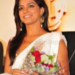 Neetu Chandra Hot Saree Stills