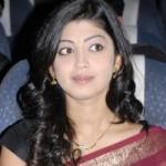 Praneetha Saree Stills