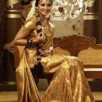 Anushka Chennai Silks Saree Stills