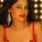 Bindu Madhavi Hot Photos