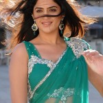 Deeksha Seth Hot in Wanted Stills