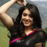 Hansika New Hot Pics in Velayutham
