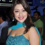 Harika (Payal Ghosh) New Hot Stills