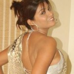 Hema Jelloju Saree Hot Pics