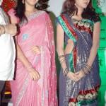 Stars At 8th Chennai International Film Festival Stills
