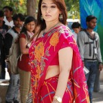 Aarthi Agarwal Hot Saree Pics