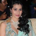 Anjali Lavania Hot in Panjaa Audio Release
