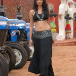 Vettaikaran Actress Anushka Shetty Stills