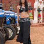 Vettaikaran Actress Anushka Shetty Stills