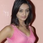 Nikita Narayan Hot Pics
