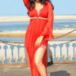Shriya Saran in hot Red Dress