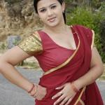 Tamil Actress Swetha Latest Hot Stills