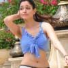 Tamanna Latest Hot Stills in Simha Putrudu Movie