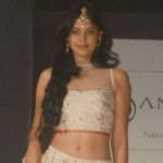 Bindu Madhavi Ramp Walk Hot Images