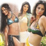 CCL 2012 Calendar Girls Hot Spicy Wallpapers