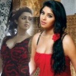 Actress CCL 2012 Calender Hot Spicy Stills