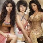 G Venkatram 2012 Calendar Hot Photoshoot Stills