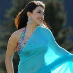 Hansika Hot in Blue Saree
