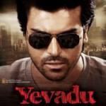 Yevadu Telugu Movie Wallpapers