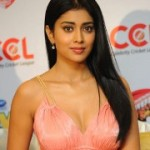 Shriya Saran Hot Spicy Stills