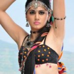 Mogudu Tapsee Hot Saree Pics
