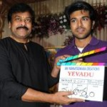 Ram Charan Yevadu Movie Opening Pictures
