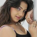 Priyanka Tiwari Hot Spicy Pics
