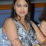 Priyanka Tiwari Hot Stills