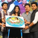 Snehitudu Movie Audio Release Photos